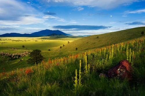Government Prairie, near Flagstaff | John Tennant