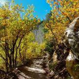 Kimberly Albrecht | Grand Canyon North RIm