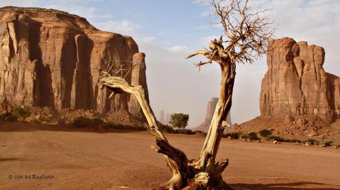 Monika Ragland | Monument Valley