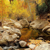 Pam Barnhart | Fish Creek Canyon