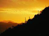 Paul Kimball | Tucson