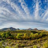 Reid Helms   Spur Cross Ranch