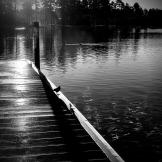 Alan Lucio | Rainbow Lake