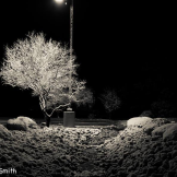 Gary Smith | Sierra Vista