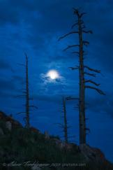 Glenn Tamblingson | Mount Elden