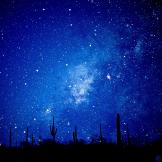 Jack Suman   Sonoran Desert