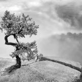 Klaus Priebe | Grand Canyon