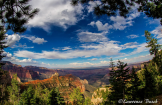 Lawrence Busch | Grand Canyon North Rim