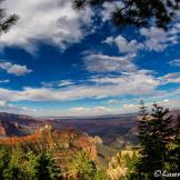 Lawrence Busch   Grand Canyon North Rim