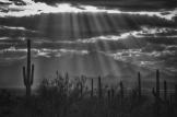 Paul Kimball | Near Tucson