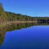Randy Gibson   Scholz Lake