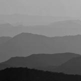 Reid Helms | Four Peaks