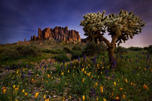 Chikku Baiju's grand-prize-winning photograph, made in Lost Dutchman State Park near the Superstition Mountains | Chikku Baiju