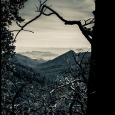 AJ Ringström Photography | Santa Rita Mountains