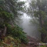 Chris Brandt | Humphreys Peak