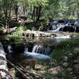 Claudia Banks | Horton Creek