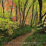 Doug Koepsel | West Fork