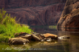 Glenn Tamblingson | Colorado River