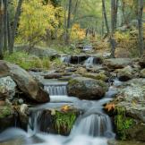 Jeff Maltzman | Horton Creek