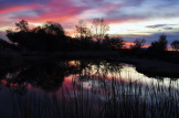 Jeff Stemshorn | Gila River