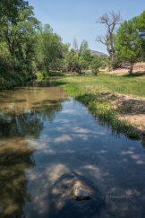 Jim Peterson | Verde River