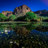 Joe Neely | Salt River