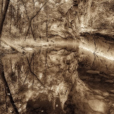 Klaus Priebe | West Fork of Oak Creek