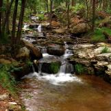 Pam Barnhart | Horton Creek