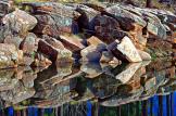 Alan Lucio | Woods Canyon Lake