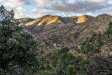 Andrew Kopolow | Chiricahua NM