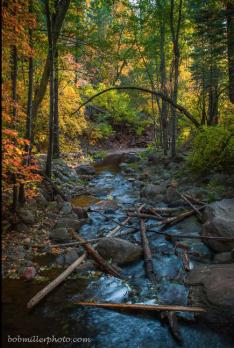 Bob Miller   Horton Creek