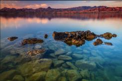 Butch Braniger | Lake Havasu