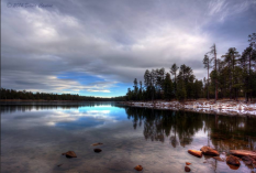 Dana Canine   Willow Springs Lake