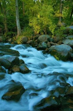 Dave Anderson   Oak Creek Canyon