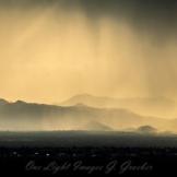 Gerry Groeber | Phoenix