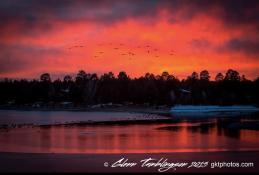 Glenn Tamblingson | Lake Elaine