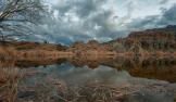 Jabon Eagar Photography   Boyce Thompson Arboretum