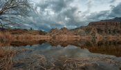 Jabon Eagar Photography‎ | Boyce Thompson Arboretum