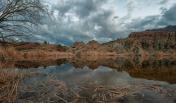 Jabon Eagar Photography | Boyce Thompson Arboretum