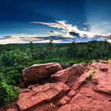 Joe Neely‎ | Pinetop