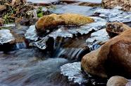 Katalin Hollay | Oak Creek