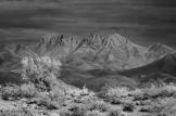 Keith Zimmerman | Four Peaks