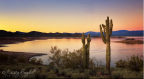 Kristy Snyder‎ | Lake Pleasant