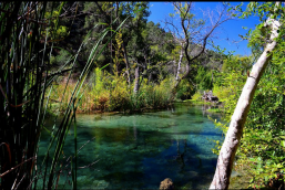Mike Waskowich‎ | Fossil Creek