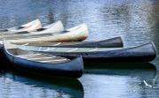 Peggy Coleman   Lynx Lake