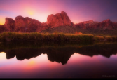 Peter James Nature Photography | Salt River