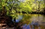 Photography by Saija   Beaver Creek