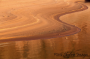 Rebecca Wilks | Lake Powell