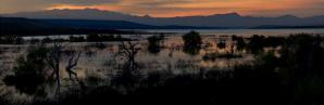 Rex Lavoie   Roosevelt Lake