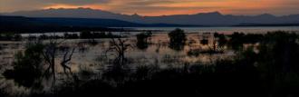 Rex Lavoie | Roosevelt Lake